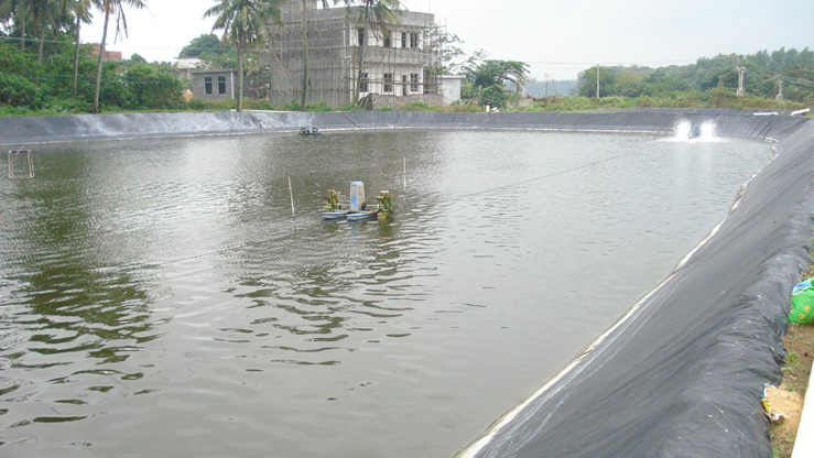 鱼塘防渗工程