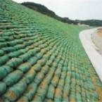 利用防草布防护能起到怎样的作用